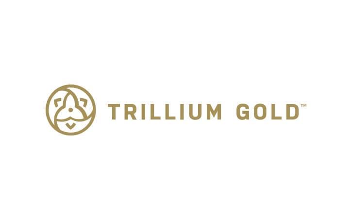 Trillium Gold Mines Inc
